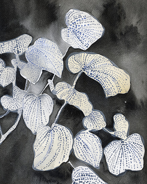 Good Bones // Rebecca Atwood Prints
