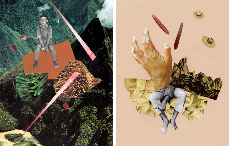 Collage by Gabi Hutchison