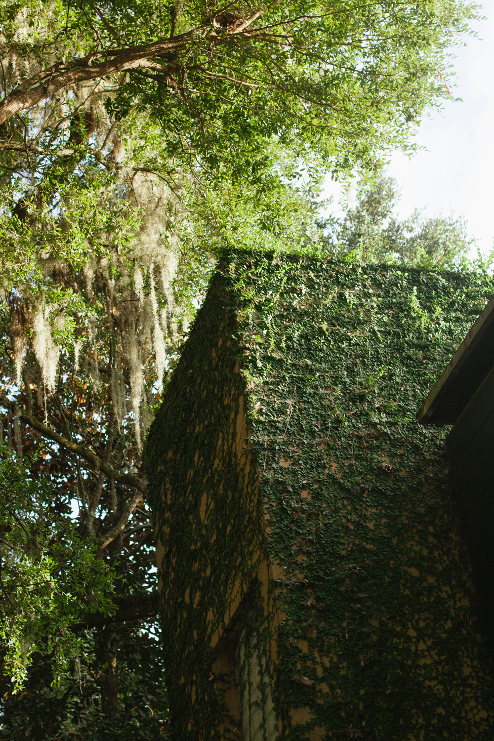 The Inn at Middleton Place | Good Bones