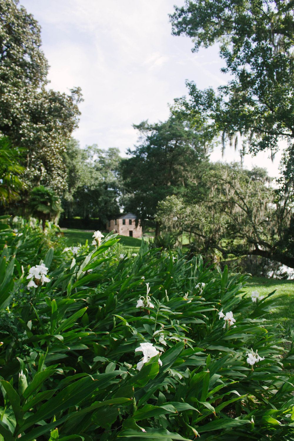 Middleton Place | Good Bones